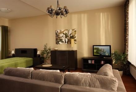apartamenty-zlota-nic.apartament-olive-salon-sypialnia