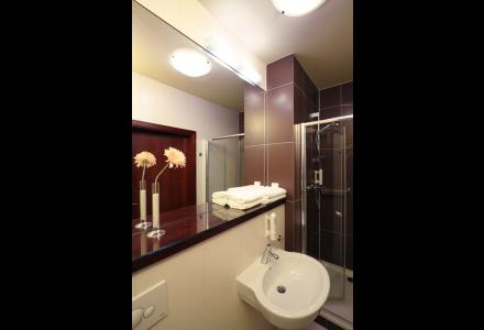 apartamnety-zlota-nic-apartament-moderne-prysznic