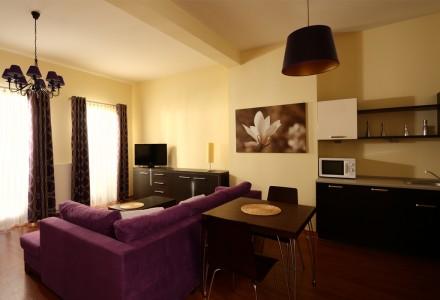 apartamnety-zlota-nic-apartament-moderne-salon-i-aneks-kuchenny