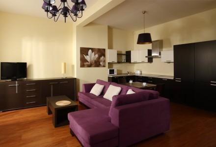 apartamnety-zlota-nic-apartament-moderne-salon-i-kuchnia